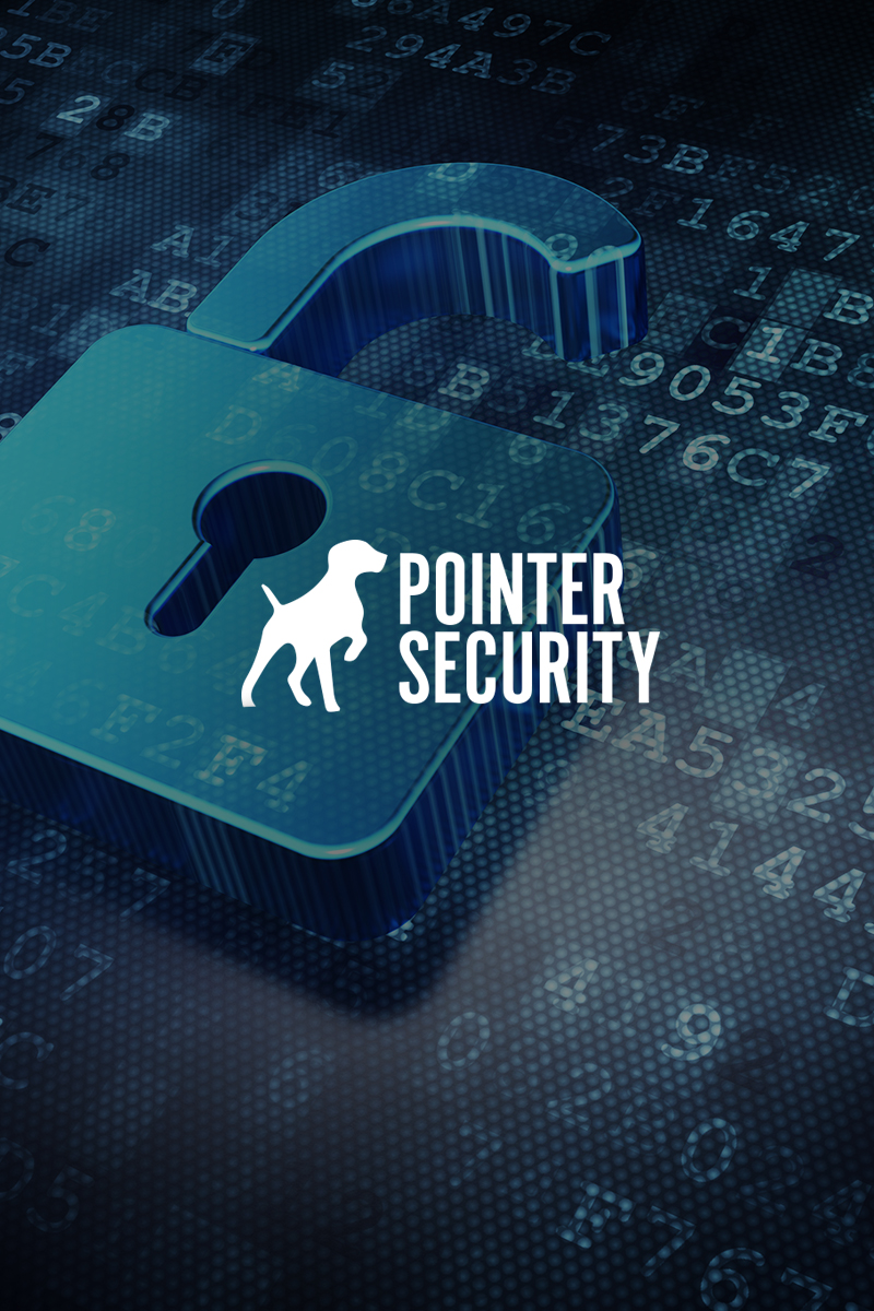 Pointer Security